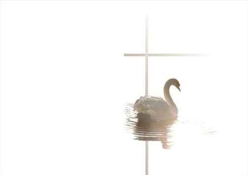 hautajaisteema-joutsen_ohjelma-ulko
