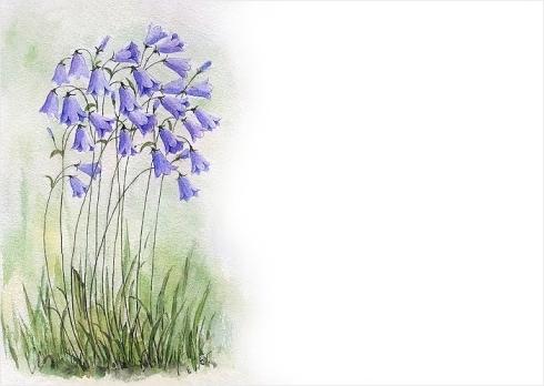 hautajaisteema-sinikellot_kortti-vaaka